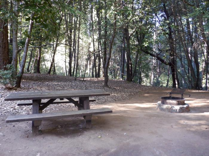 School House Site 34Picnic table and fire ring