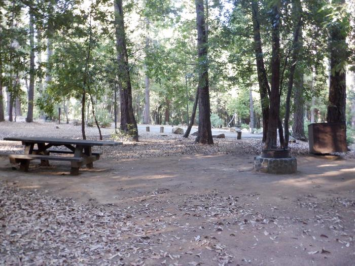Site 35Picnic table, fire ring and bear box