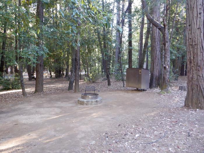 Site 36Tent pad, fire ring and bear box