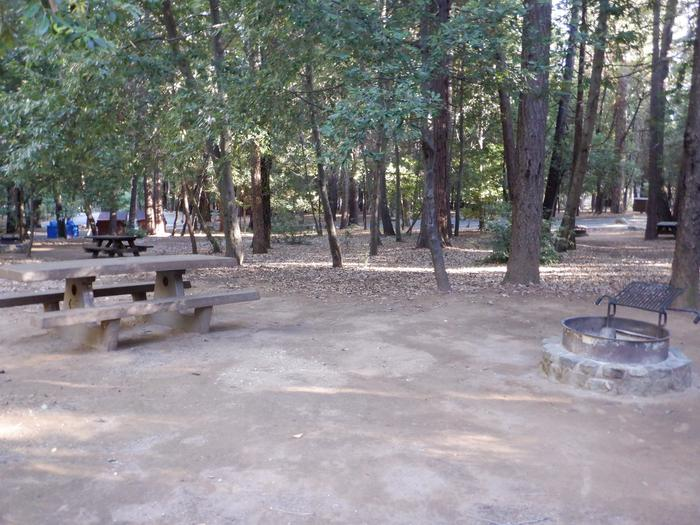 Site 36Picnic table and fire ring