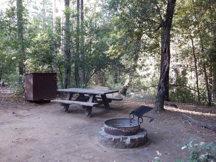 School House Campground Site 37Bear box, picnic table and fire ring