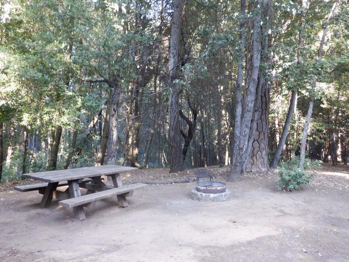 School House Site 37Tent pad, picnic table and fire ring