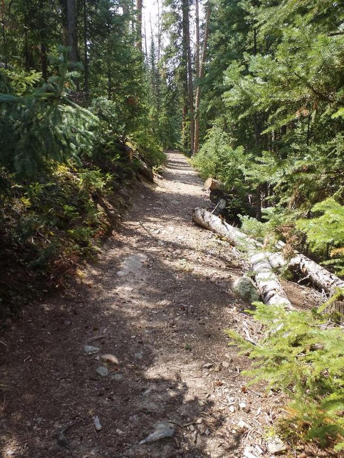 Trail 2trail 3