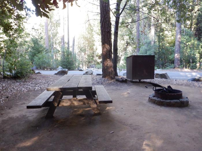 School House Campsite 38Picnic table, bear box and fire ring