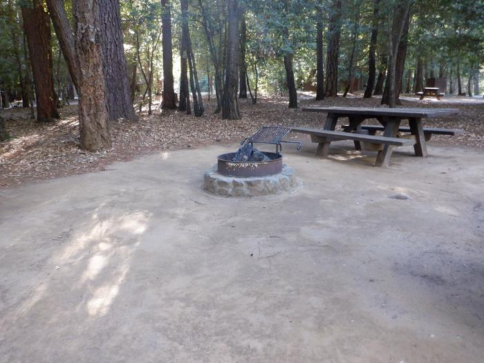 School House 38Tent pad, fire ring and picnic table
