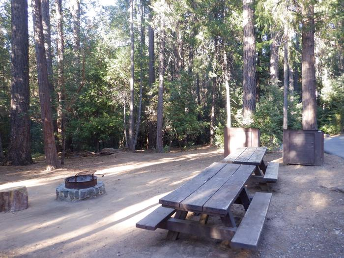 School House 40DDouble site: Picnic tables, bear boxes and fire ring