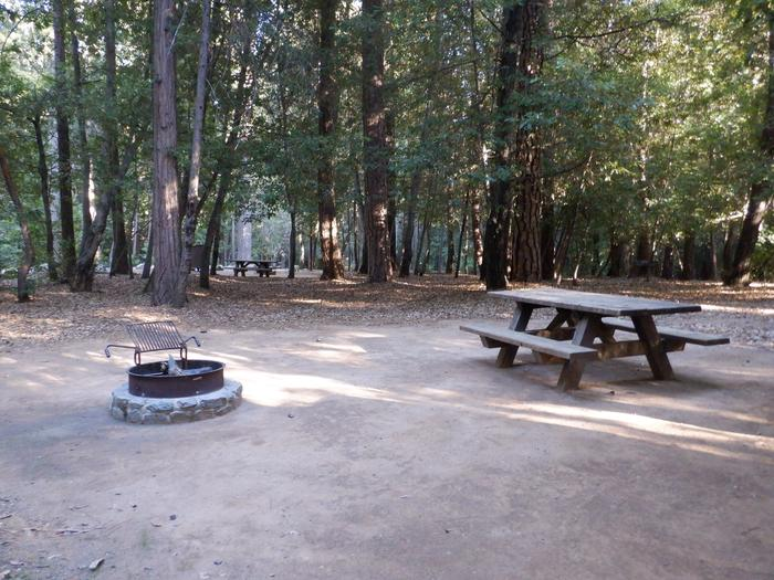 School House House Site 41Fire ring and picnic table