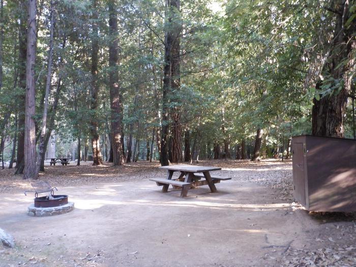School House 41Fire ring, picnic table, bear box and tent pad