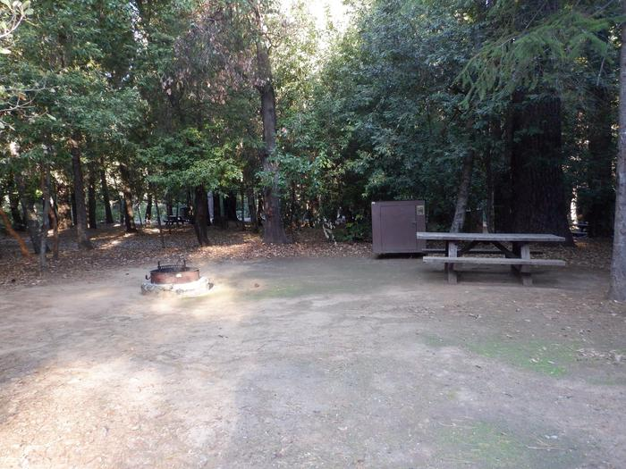 School House Site 43Fire ring, bear box and picnic table