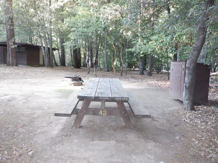 School House 43Picnic table, bear box and fire ring