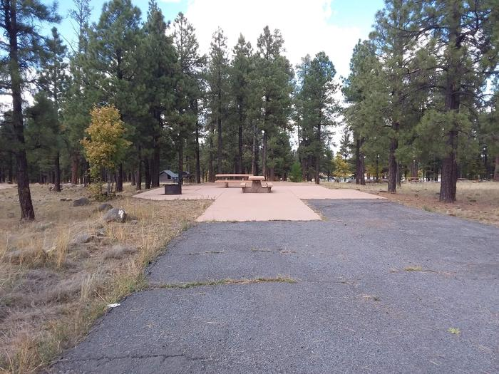 Paved site with treesSite 007