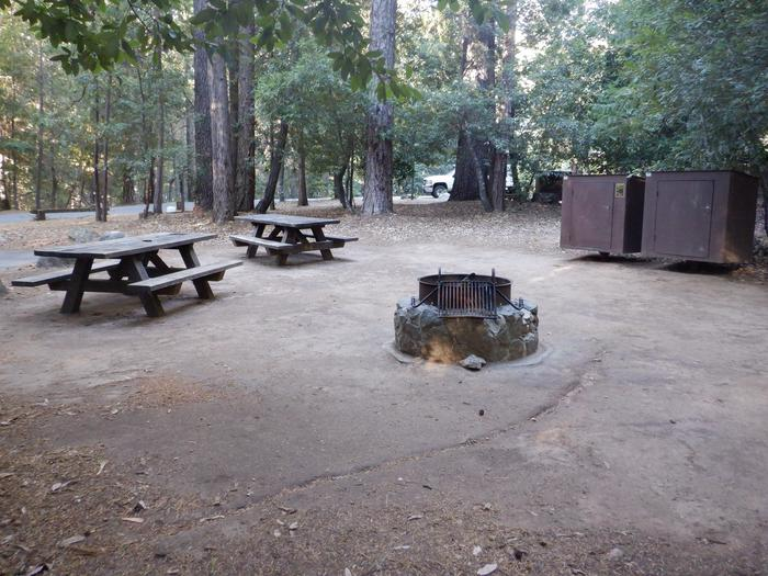 Site 44 DDouble site including two picnic tables, two bear boxes and fire ring