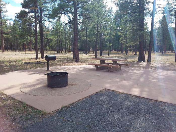 Paved campsite with standup grillSite 011