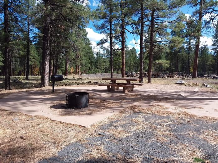 paved campsite with treesSite 012