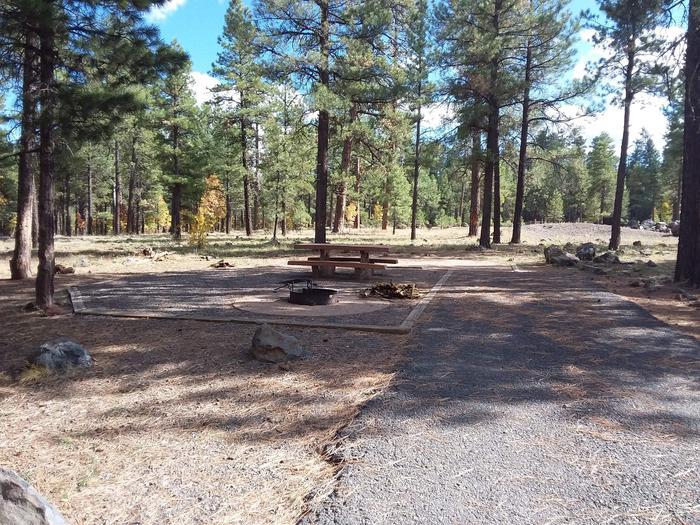 paved campsitesite 014