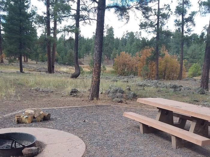 gravel site in trees site 029