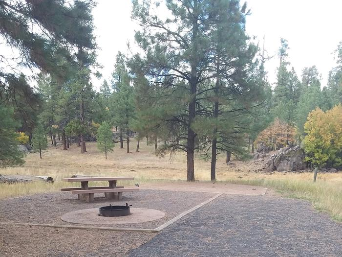 gravel campsite with picnic table and fire ringsite 039