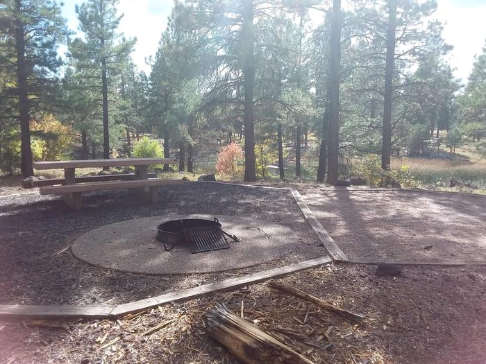 campsite with picnic table and fire ringsite 051