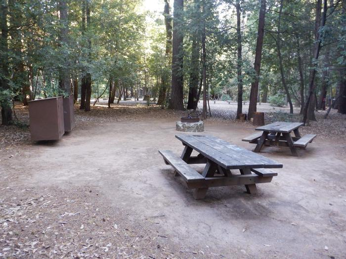Site 44 DoublePicnic tables, bear boxes and fire ring