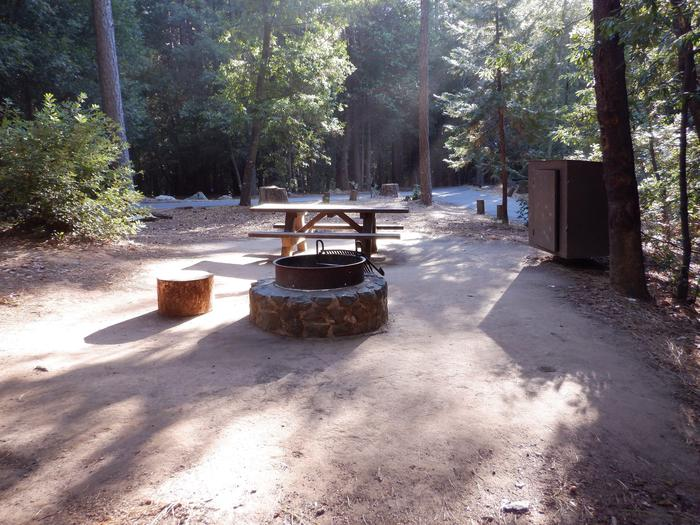 Site 45Fire ring, picnic table and bear box