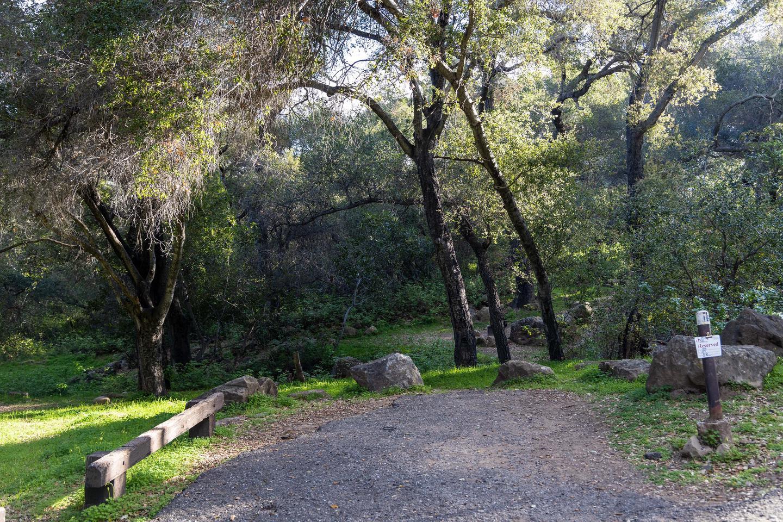 Los Prietos Site 16