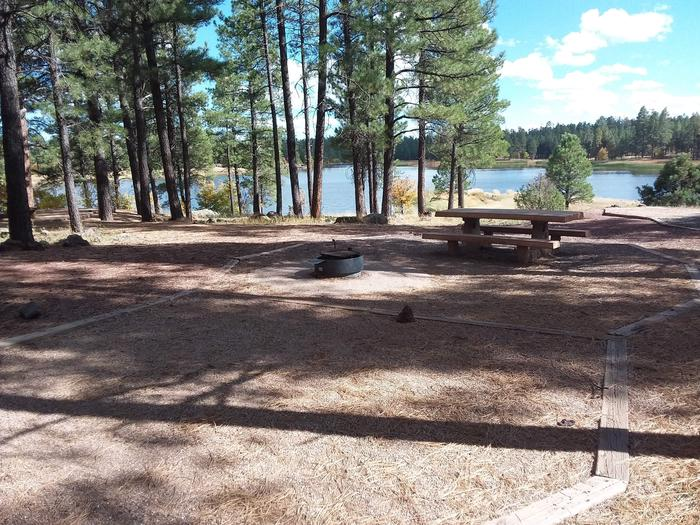 campsite with trees and view of the lakesite 056