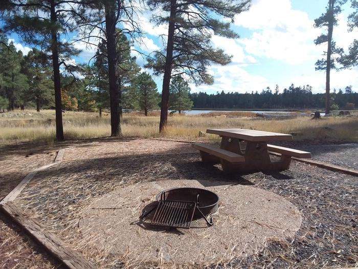 campsite with fire ring and picnic tablesite 065
