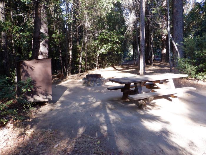 Site 45Bear box, fire ring and picnic table