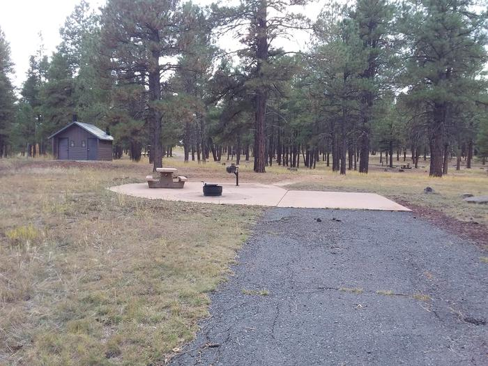 campsite that is close to a vault toiletsite 072