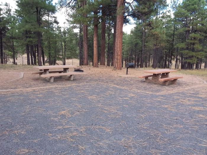 gravel campsite with two picnic tables and a grillsite 077