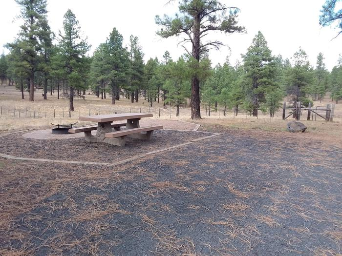 campsite with picnic table and fire ring and fence in backgroundsite 079
