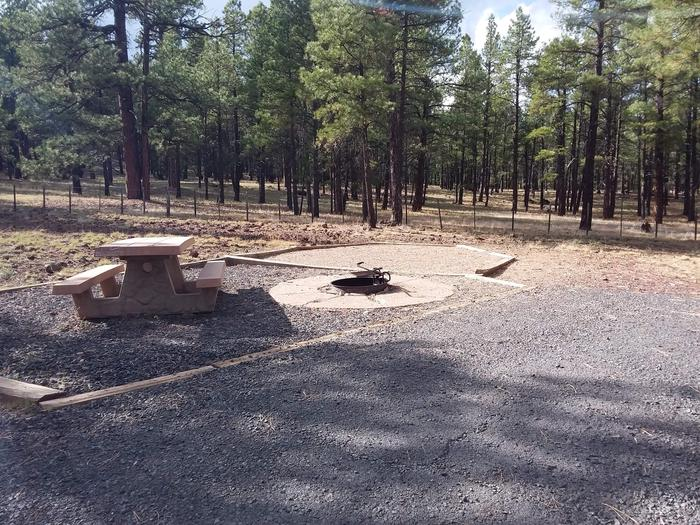 Gravel campsite with fire ringsite 081