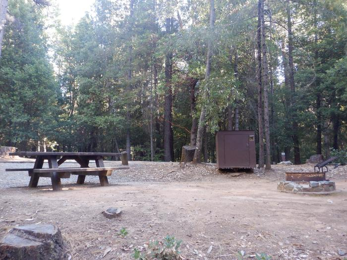 School House Site 46Picnic table, bear box and fire ring