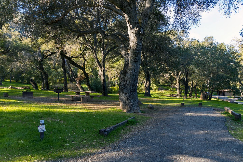 Los Prietos Site 29