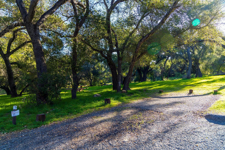 Los Prietos Site 34