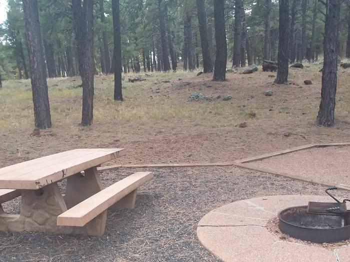 campsite with picnic table and fire ringsite 085