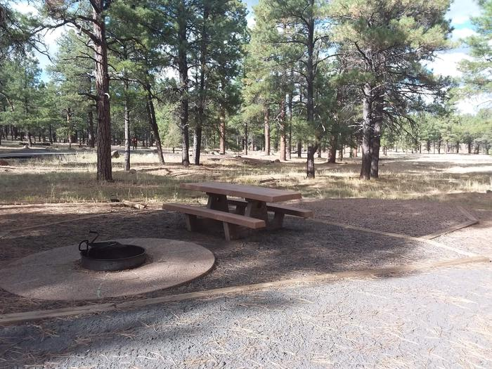campsite with fire ring and picnic table site 086