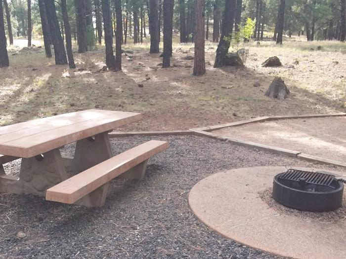 campsite with picnic table and fire ringsite 087