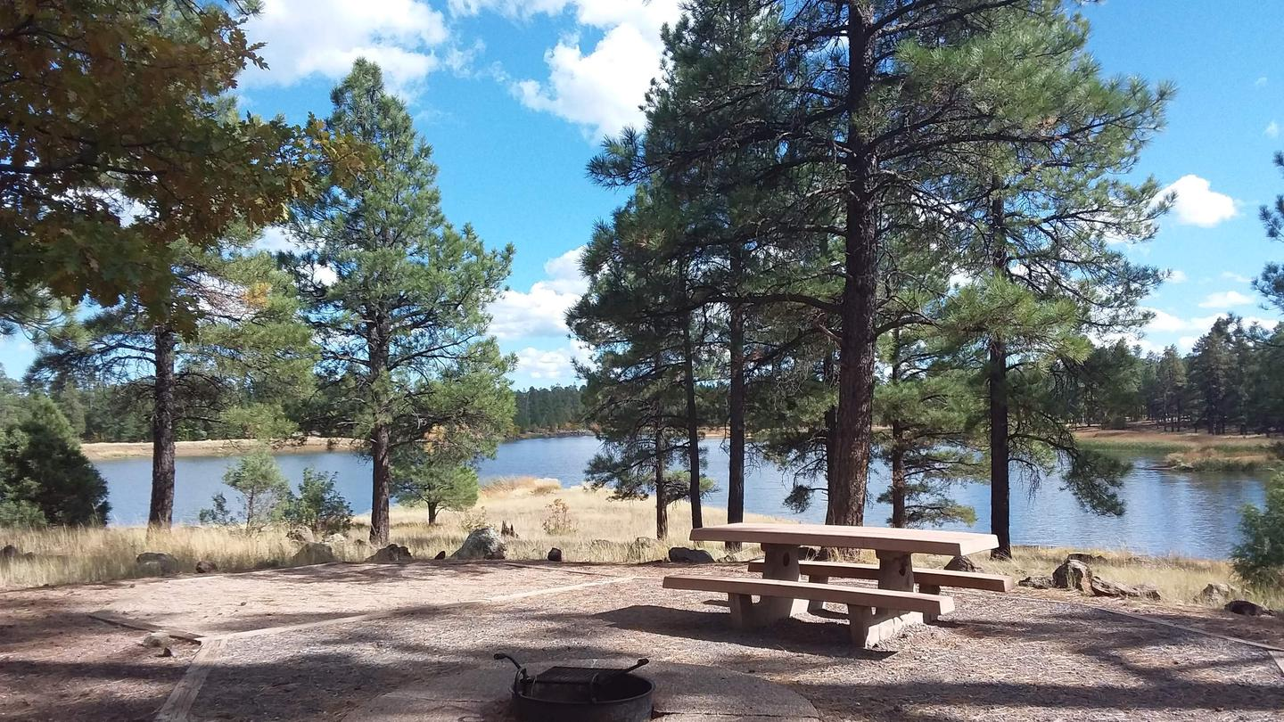 Beautiful view of the lake with a picnic table, fire ring and trees in the backgroundSite 55