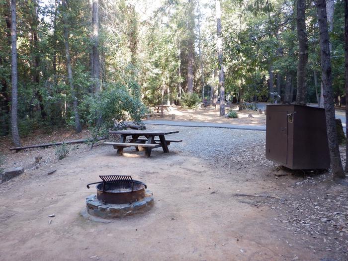campsite 46Site 46