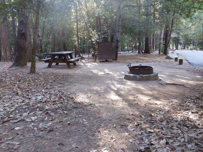 School House Site 47Picnic table, bear box and fire ring