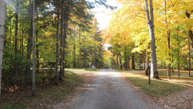 Leech Lake Rec Area, Federal Dam, MNLeech Lake Recreation Area in the fall