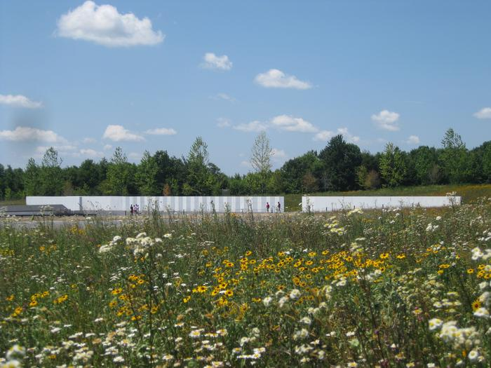 Wildflower field at the Memorial Plaza at the crash site