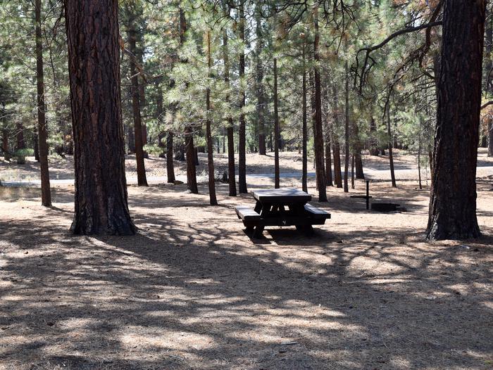 Site #4Aspen Grove Campground, Site #4