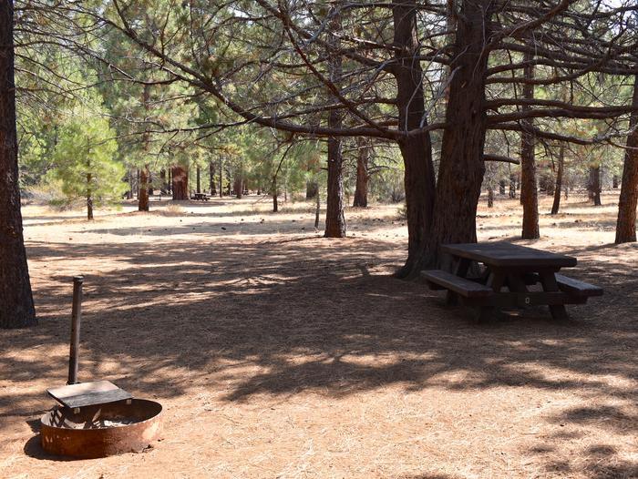 Site #8Aspen Grove Campground, Site #8