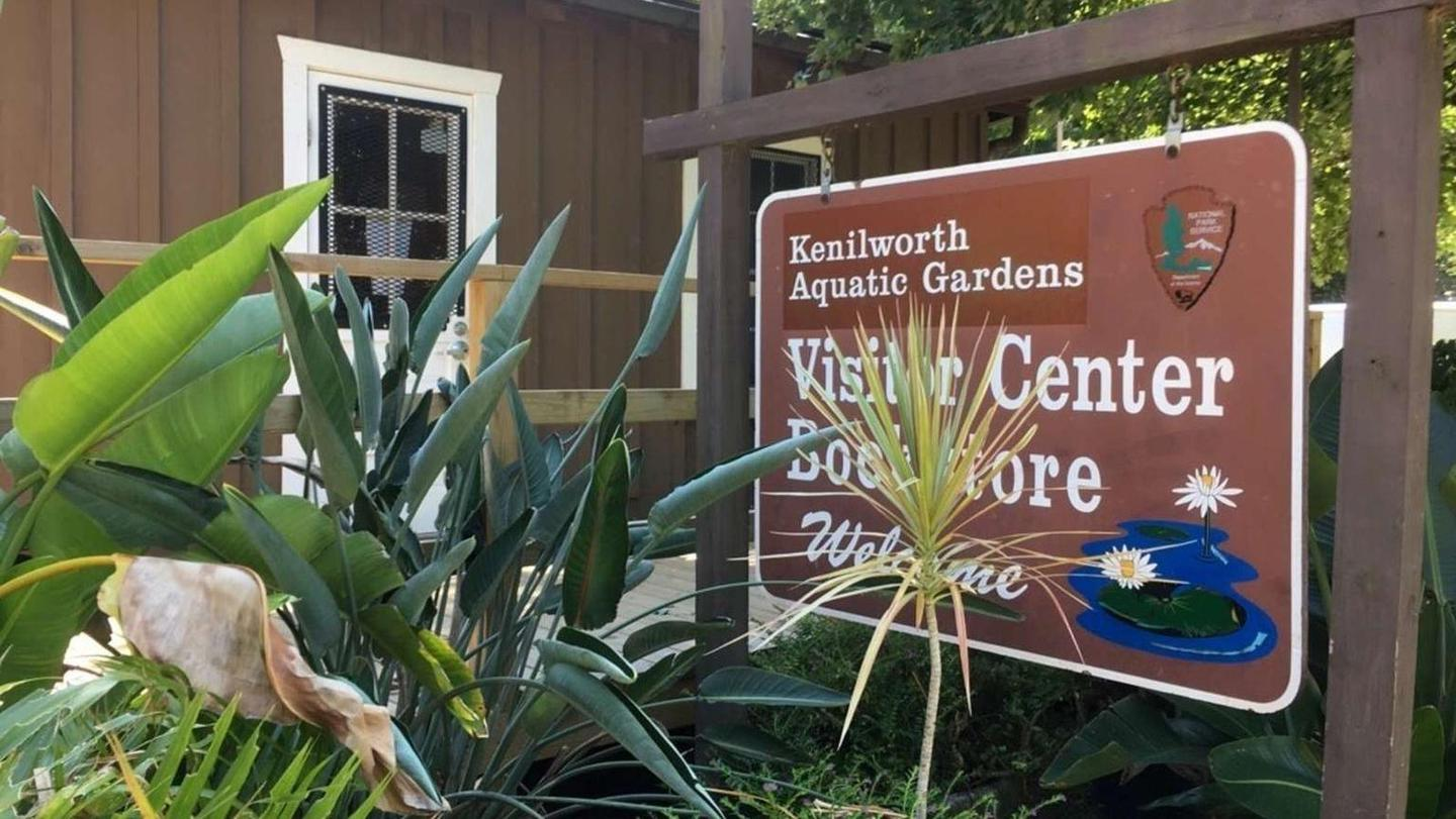 Kenilworth Aquatic Gardens Visitor CenterVisit the visitor center and bookstore to get information and maybe pick up a souvenir.