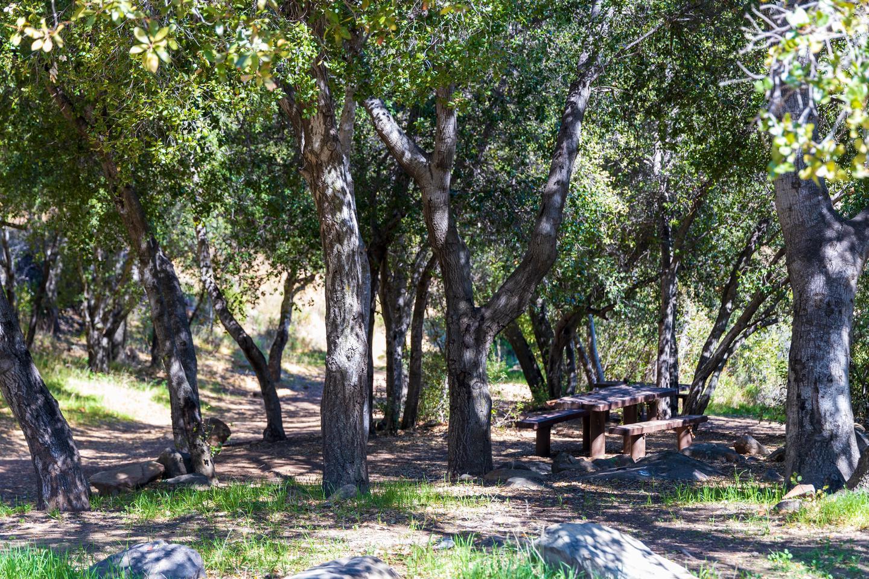 Holiday group Campground fHoliday group Campground