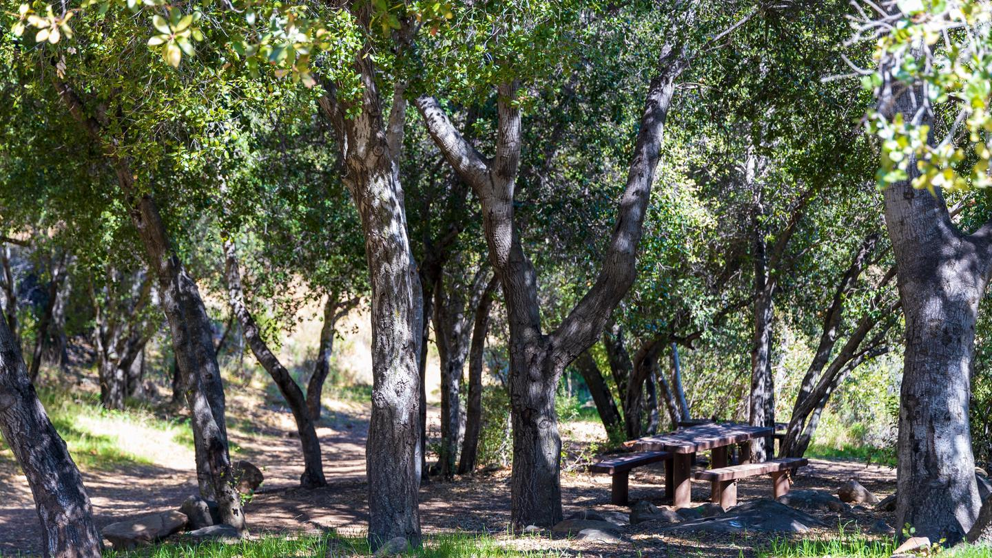 Holiday Group Campground
