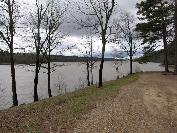Bear Creek Lake view scene