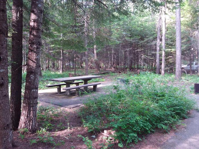 Yaak River Site 1-picnic table